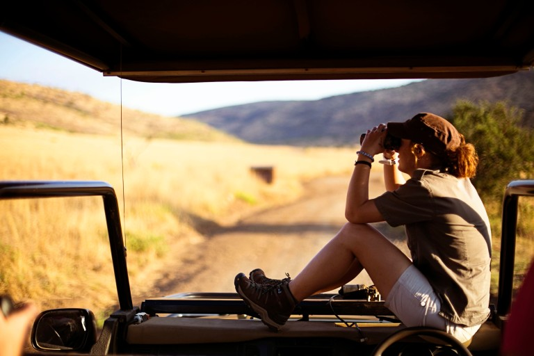 Safari- Looking for lions